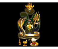 ~##warangal along##~ wife~#+91-7568884333#~love vashikaran specialist baba ji vizianagaram