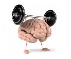 SF180 Brain:Helps keep the strong learning, thinking and grasping power
